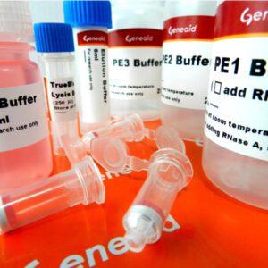 lab-con-gene-plasmid-001-1