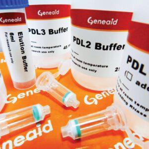 lab-con-gene-plasmid-003-1